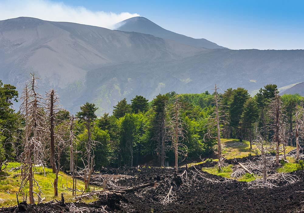 Visit Mount Etna with our Etna excursions