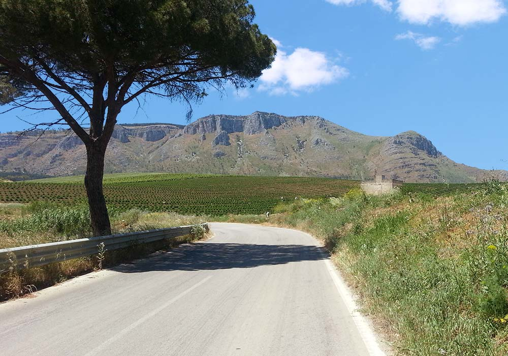 On the road to Monte Inici